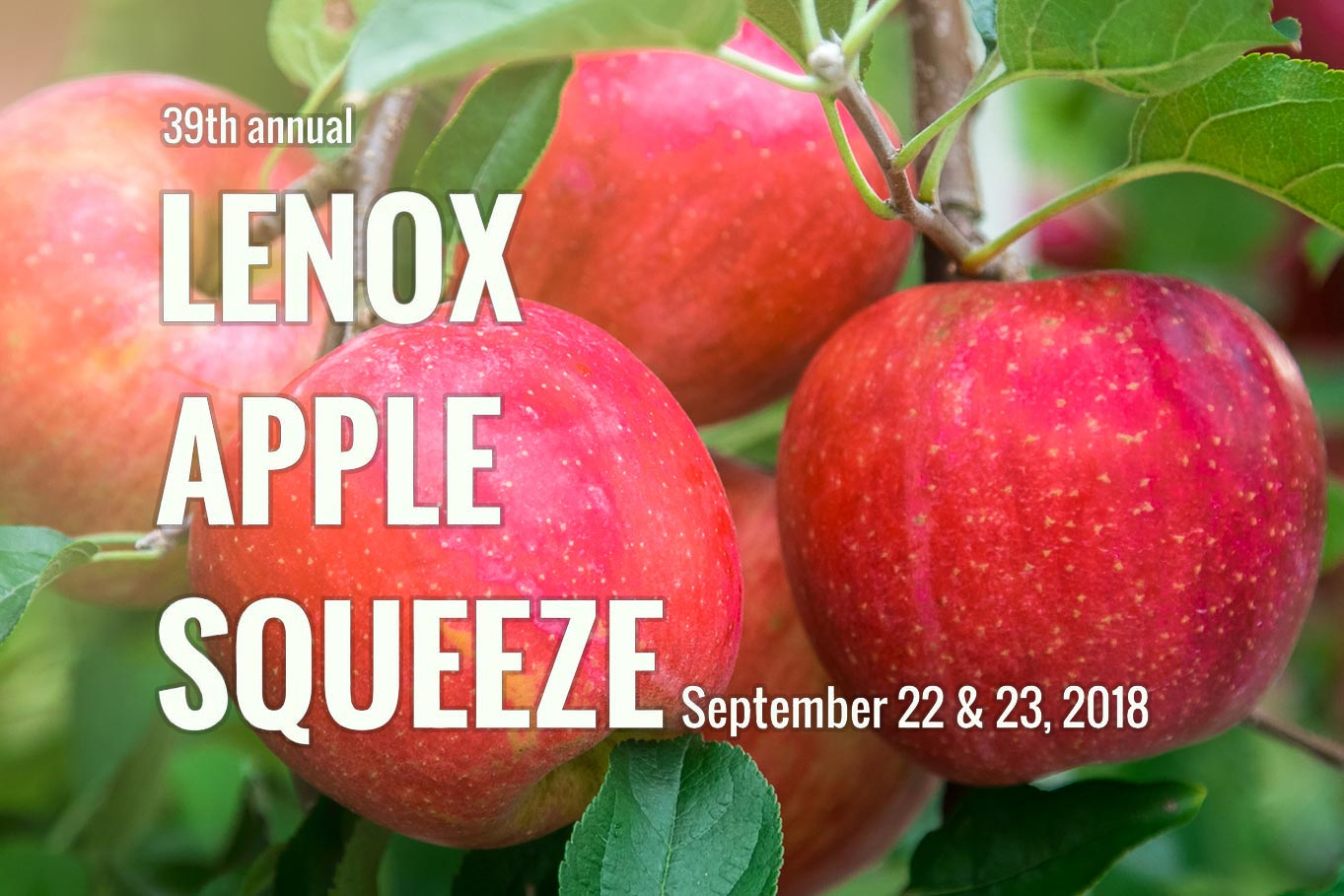 Lenox Apple Squeeze 2018
